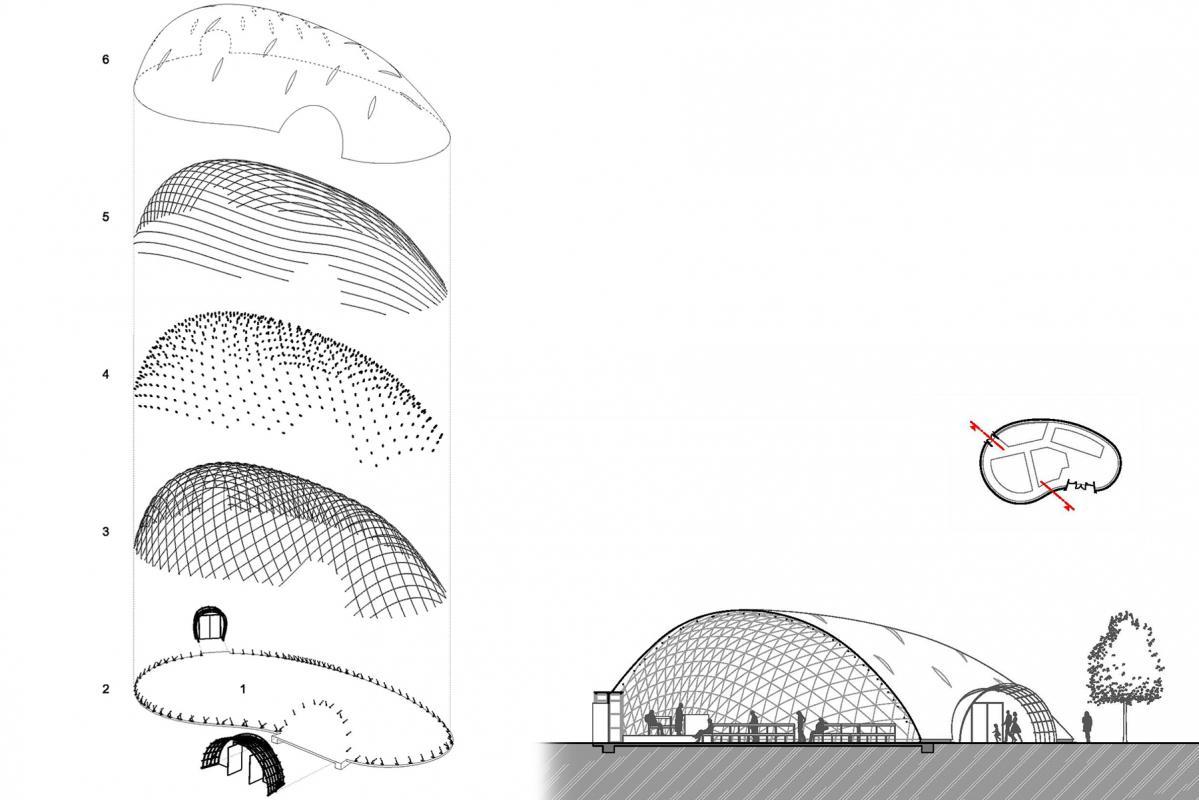 Composition de la structure.